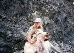 Alaska Ram.jpg