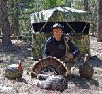 Turkey 2012 Export.jpg