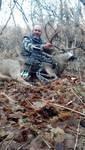 Utah deer 3.jpg