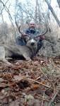 Utah deer 2.jpg