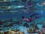 350px-Spear_fisherman_in_Hawaii.jpg