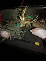 Muley Buck3.jpg