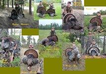 2015 Turkeys.jpg