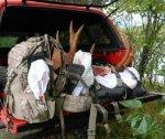 Moose Truck.jpg