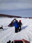 Iditarod 1.jpg