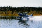 Alaska 97 (6).JPG