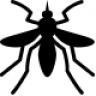 MosquitoCoast